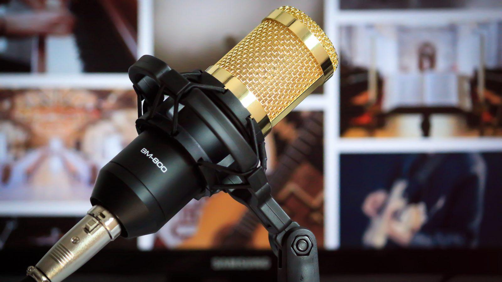 best microphones under 100